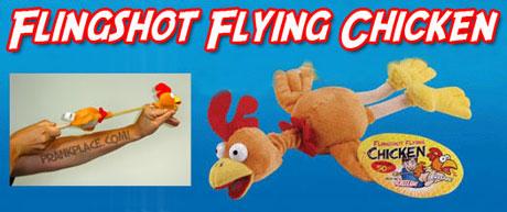 Fling Chicken