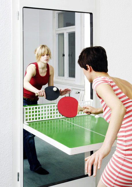 ping pong door