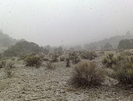 snowing in new mexico