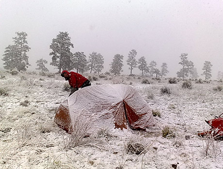 Camping in snowy new mexico