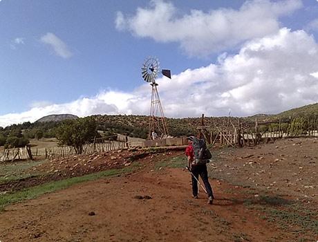 Water windmill