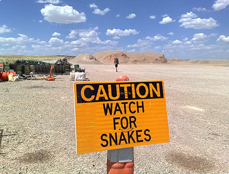 Caution, watch for snakes sign!